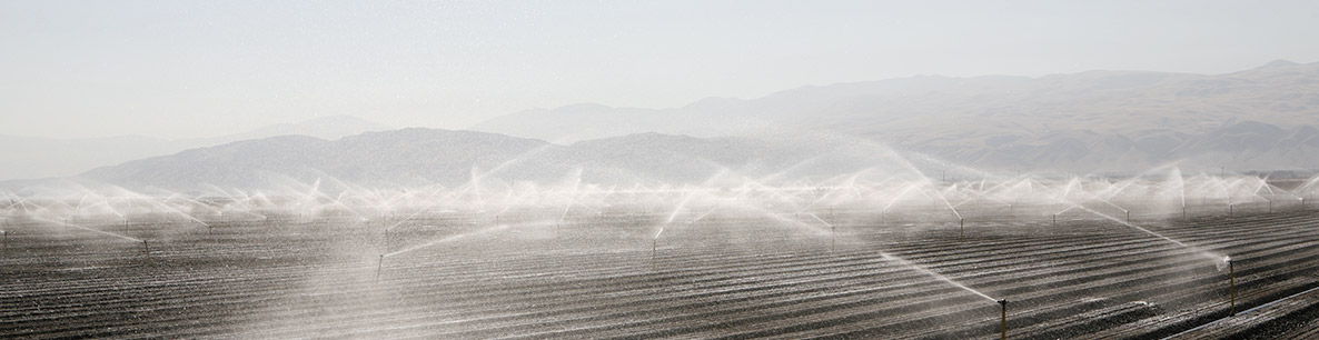 crop irrigation and water run-off