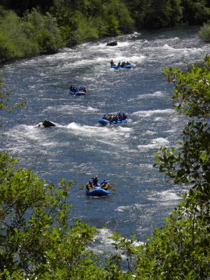 south-fork-rafting